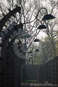 auschwitz-drut-lamp-drut-19512617.jpg